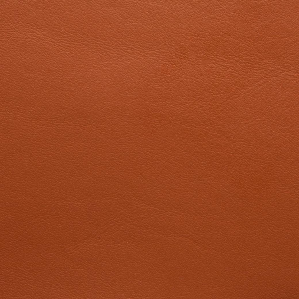 Caledonian Burnt Orange